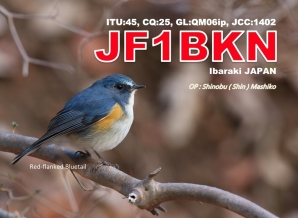 image of jf1bkn